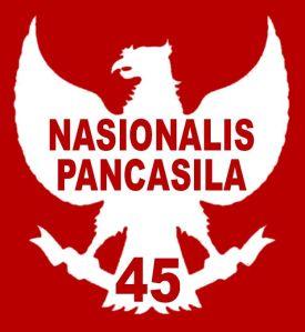 Logo NasPan45