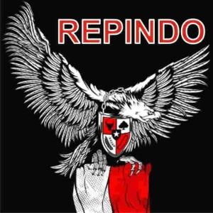 Logo REPINDO