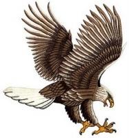 Garuda Mabur2